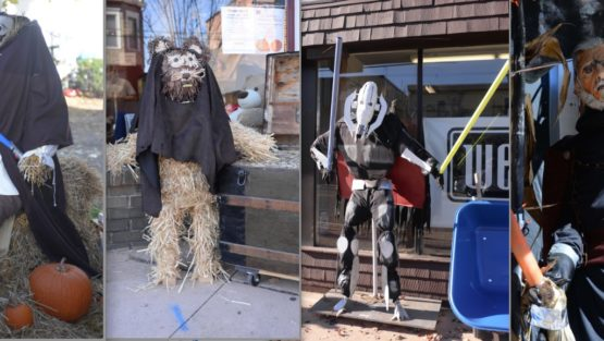 2015scarecrowcolage